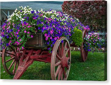 Flower Wagon Canvas Print by Gene Sherrill