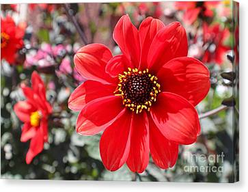 Canvas Print featuring the photograph Flower1 by Theresa Ramos-DuVon