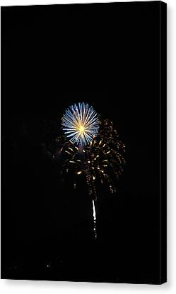 Flowering Burst Canvas Print