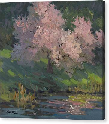 Flowering Cherry Canvas Print by Diane McClary