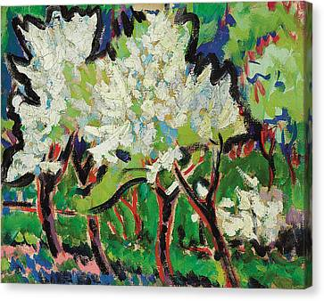 Flowering Trees Iv Canvas Print by Ernst Ludwig Kirchner