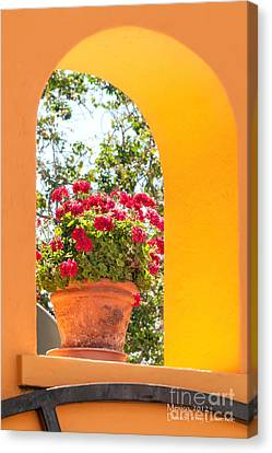 Canvas Print featuring the photograph Flowerpot In A Mexican Wall by David Perry Lawrence