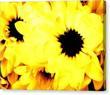 Flowers 2 Canvas Print by Jason Michael Roust