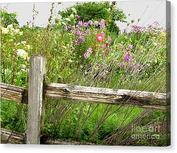 Flowers And Fences Canvas Print