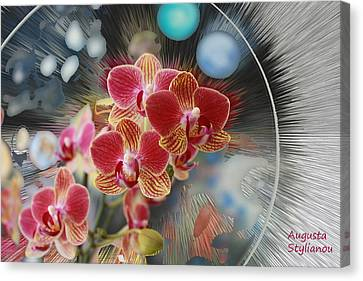 Flowers And Planets Canvas Print