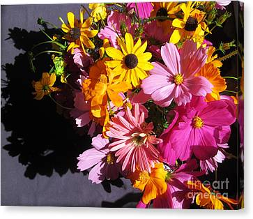 Flowers And Shadow Canvas Print by Tina M Wenger