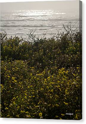 Flowers And The Sea Canvas Print by Allen Sheffield