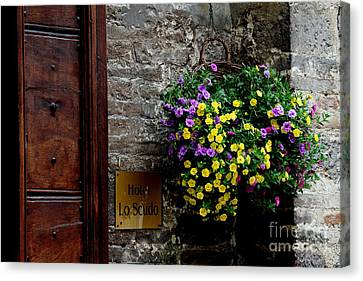Canvas Print featuring the photograph Flowers - Assisi by Theresa Ramos-DuVon