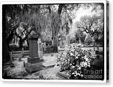 Flowers By The Grave Canvas Print by John Rizzuto