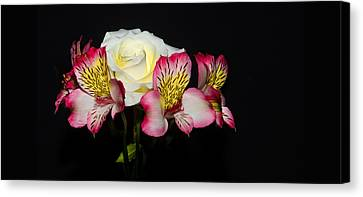 Flowers Canvas Print by Cecil Fuselier