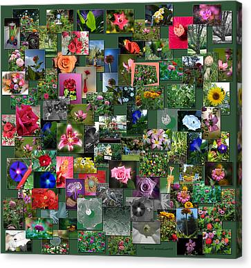 Coller Canvas Print - Flowers Collage Square by Thomas Woolworth