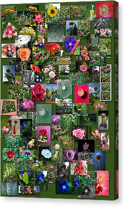 Coller Canvas Print - Flowers Collage Vertical by Thomas Woolworth