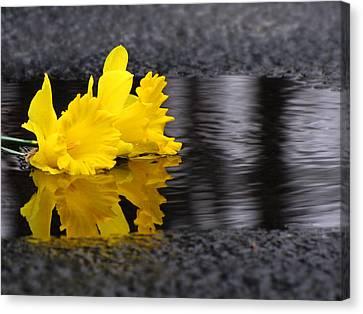 Flowers Come With Rain Canvas Print by Freda Nichols