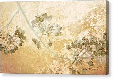 Delicate Canvas Print - Flowers Delicate Buds  by Ann Powell