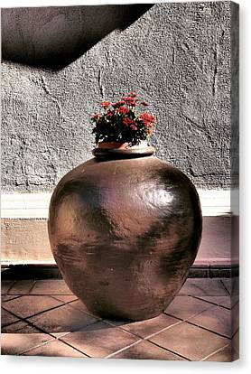 Flowers In A Pot Canvas Print by Bill Grolz