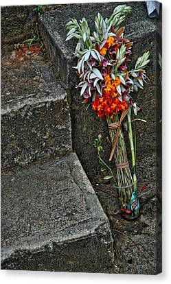 Flowers In Cuba Canvas Print by Larry Sides