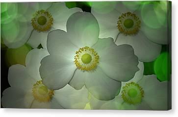 Louis Ferreira Art Canvas Print - Flowers In My Garden by Louis Ferreira