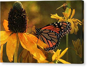Flowers Of The Day Canvas Print