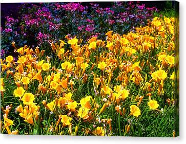 Canvas Print featuring the photograph Flowers by Tim McCullough