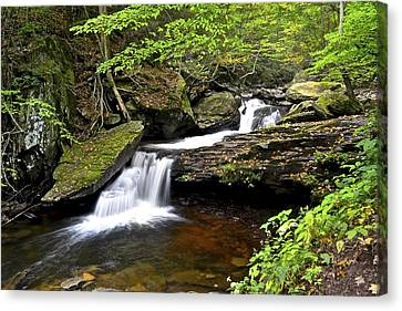 Flowing Falls Canvas Print by Frozen in Time Fine Art Photography