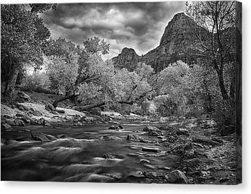 Flowing River In Zion Canvas Print