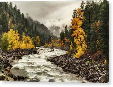 Flowing Through Autumn Canvas Print by Mark Kiver