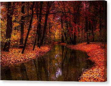 Flowing Through The Colors Of Fall Canvas Print by Hannes Cmarits