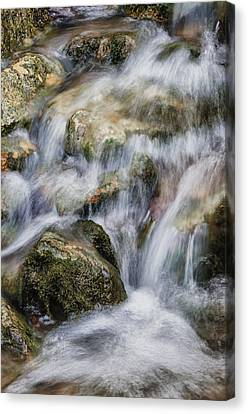 Flowing Waters Canvas Print by Diana Boyd