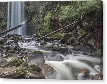 Flowing Waters Canvas Print by Shari Mattox