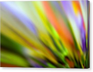 Undefined Canvas Print - Flowing With Life 16 by Angelina Vick