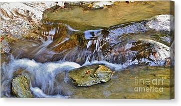 Flow'n Canvas Print by Butch Phillips