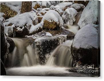Fluid Ice Canvas Print by Mitch Shindelbower