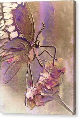 Fluorescent Butterfly Canvas Print by Jill Balsam