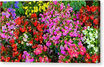 Flwrs Test 1 Canvas Print