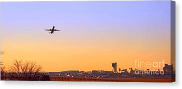 Fly Away Canvas Print by Olivier Le Queinec