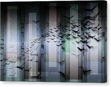 Fly By Night Canvas Print by Stacey Clarke
