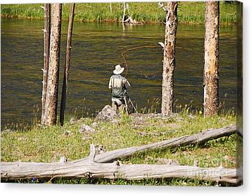 Canvas Print featuring the photograph Fly Fishing by Mary Carol Story