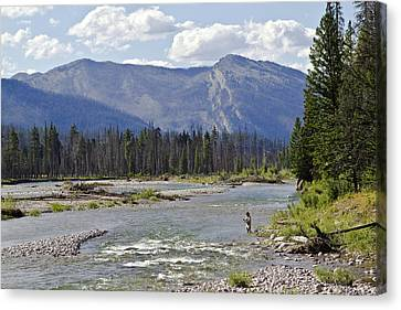 Fly Fishing On The South Fork Of The Flathead River Canvas Print by Merle Ann Loman