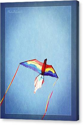 Fly Free Canvas Print by Jamie Johnson
