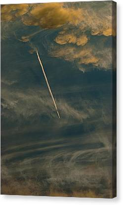 Fly High Canvas Print by Sean Holmquist