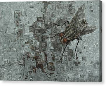 Abstract Art On Canvas Print - Fly On The Wall by Jack Zulli
