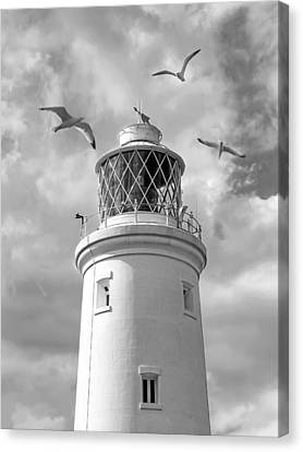 Fly Past - Seagulls Round Southwold Lighthouse In Black And White Canvas Print by Gill Billington