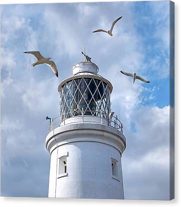 Fly Past - Seagulls Round Southwold Lighthouse - Square Canvas Print by Gill Billington