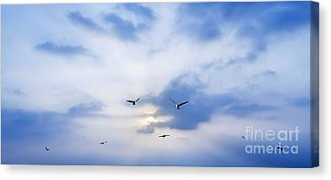 Twilight Views Canvas Print - Fly To Freedom by Setsiri Silapasuwanchai