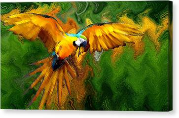 Flying 2 Canvas Print by Bruce Iorio