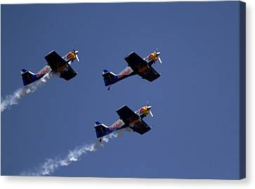 Flying Bulls Canvas Print by Ramabhadran Thirupattur