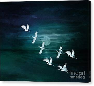 Flying By The Moon Bay Canvas Print by Bedros Awak