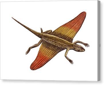 Flying Dragon Canvas Print by Deagostini/uig