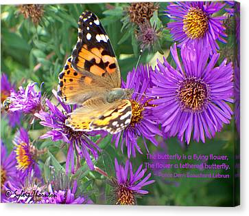 Canvas Print featuring the photograph Flying Flower by Sylvia Thornton