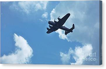 Canvas Print featuring the photograph Flying High by John Williams